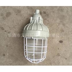 CCD93-J42g防爆吊灯 防爆节能灯厂家图片