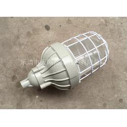 BAD81-J85h1H 防爆紧凑型节能灯厂家供应图片