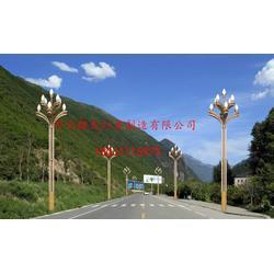 麒发照明供应户外道路照明灯杆、led太阳能路灯图片