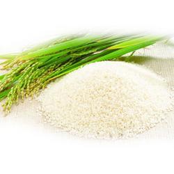 南昌儿童营养大米- 百金惠杀虫灯-儿童营养大米图片