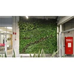 立体绿化-昱顺实业-北京室外立体绿化图片