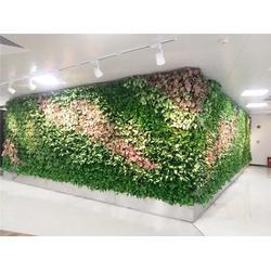 立体绿化植物墙-浙江植物墙-昱顺实业图片