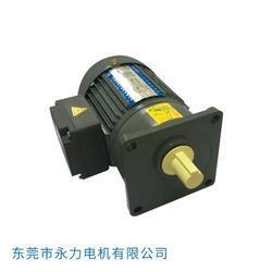 电动机厂家 SANLY永力电机(在线咨询) 东莞电动机图片