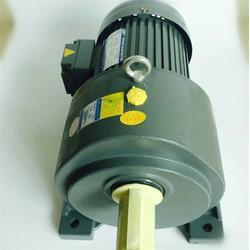 调速电机报价|SANLY永力电机(在线咨询)|汕头调速电机图片