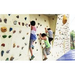 攀岩墙专业定制 乐龙游艺设备 南阳攀岩墙图片