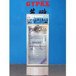 防爆冷藏冷柜,英鹏防爆冷藏冷柜BL-200LC300L图片