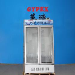 英鹏防爆冷藏冷柜,药厂防爆冰箱BL-200LC700L图片