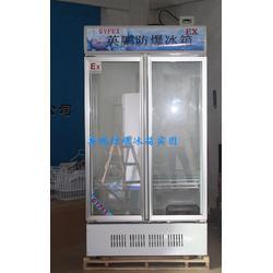 科学研所防爆冰箱,英鹏防爆冷藏冷柜BL-200LC900L图片