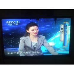 液晶屏-HSD101PWW1-A00-蓝齐鑫(优质商家)图片