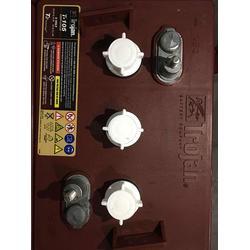 西双版纳观光车电池,长岭瀚欣科技有限公司,观光车电池图片