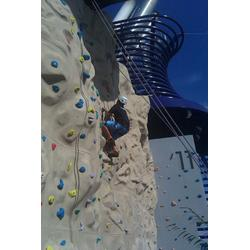 蚌埠景区攀岩墙厂家-攀岩墙(天利游乐)(查看)图片