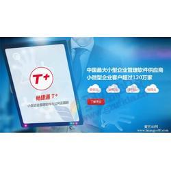 西藏用友软件,用友软件模板,乐柠(推荐商家)图片