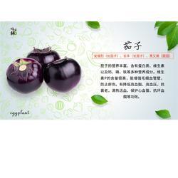 天津生態蔬菜平臺-青昀初陽商城圖片