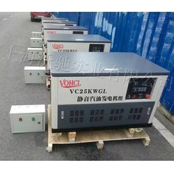 25KW汽油发电机参数及报价图片
