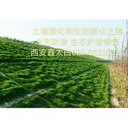 隧道边坡生态修复护坡绿化生态植被重建土壤固化剂图片