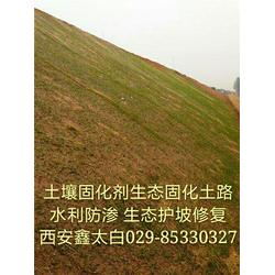 生态混凝土生态环境修复土壤稳定剂图片