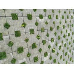 南平生态草坪砖-广州弘通建材有限公司-生态草坪砖厂家价格