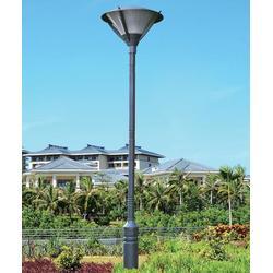 惠州小区LED庭院灯-七度照明非标定制生产图片