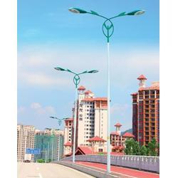 七度照明源头生产厂家专车送货-深圳8米双臂路灯杆价图片