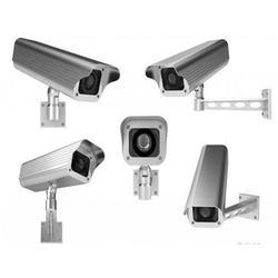 监控系统、金视野智能科技(在线咨询)、监控图片