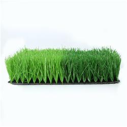 人造草坪厂家-运动草坪图片