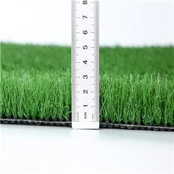 学校球场草坪图片