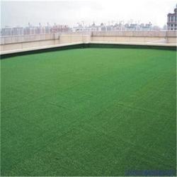 足球场人造草坪防滑5.0图片