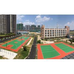 篮球场围网、篮球场、雄奥体育(查看)图片