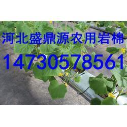 武强盛鼎大量生产农业岩棉农用岩棉栽培基质图片