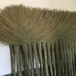 厂家直销优质笤帚 精品扫把 毛扫 学校工地清洁专用图片