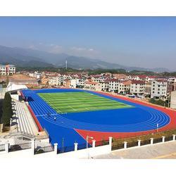 透气型塑胶跑道-淮北塑胶跑道-安徽国优体育工程公司(查看)图片