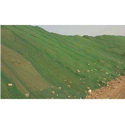 襄阳盖土网规格-废墟盖土网规格-相宇遮阳网图片