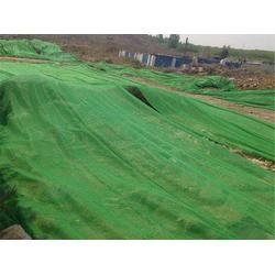 相宇盖土网厂-盖沙盖土网生产厂家-山东盖沙盖土网生产厂家图片