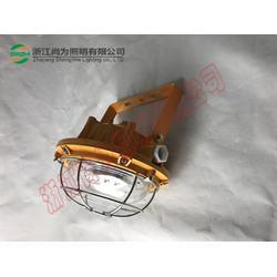 尚为SW7151SW7151防爆LED泛光灯图片