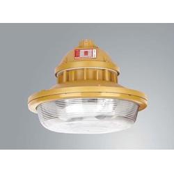 森本BSF6106免维护节能防水防尘防腐灯-三防无极灯-电磁感应灯65W图片