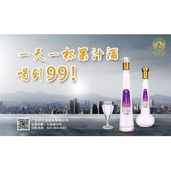 果汁酒厂家直销-广东华子龙(在线咨询)西安果汁酒图片