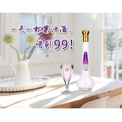 果汁酒厂家直销-广东华子龙(在线咨询)白城果汁酒图片