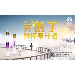 邯郸果汁酒-广东华子龙厂家-果汁酒供应商图片