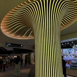 中庭包柱弧形铝方通 造型铝格栅 铝树图片