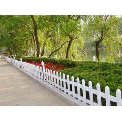 pvc草坪護欄 綠化圍欄 花壇護欄 廠家直銷圖片