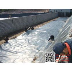 聚乙烯膜系列土工膜产品图片