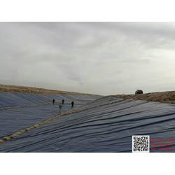 土工布生产设备聚酯长丝土工布图片