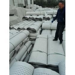 供应质优价廉排水板 屋顶绿化葛根层厂家图片