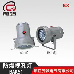 聚光式视镜灯 BAK51 防爆视孔灯图片