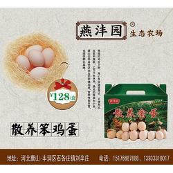 唐山-林下散养鸡蛋-秦皇岛草莓采摘图片