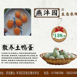 燕沣园-唐山采摘园-北京采摘园图片