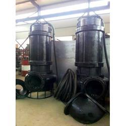 石材粉末泵 加工厂废料泵 沉淀池抽取泵图片