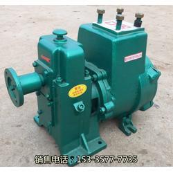 哪里买80QZ60/90洒水泵报价多少钱图片