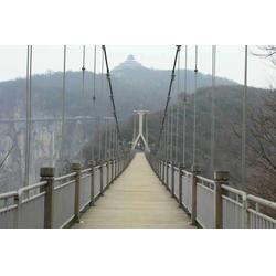 景观吊桥-水上吊桥-森林吊桥安装厂家图片