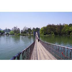 景区吊桥安装厂家-做网红吊桥公司-木质吊桥公司图片